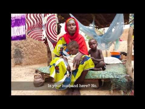 Social Safety Net in Niger
