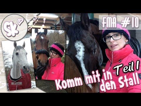 Komm mit in den Stall: Lustiges Pferdeumparken - Teil 1 | 17.02