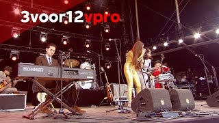 Kitty, Daisy & Lewis - Baby Bye Bye (Live @ Pinkpop Festival 2015)