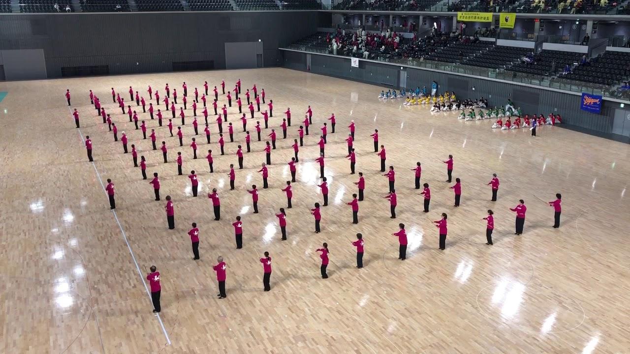 2019太極拳全国交流大会 24式太極鞭杆