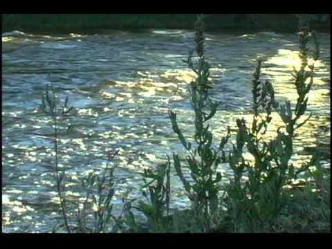 Handel: Water Music, Hornpipe