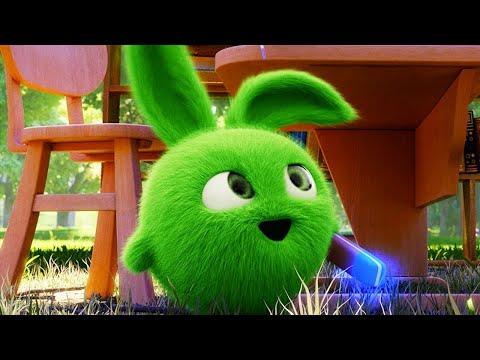 Sunny Bunnies – BORRADOR MÁGICO | Dibujos animados para niños | WildBrain en Español