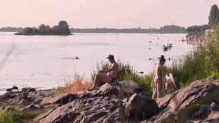 Пляж у дамбы Живая картина Кременчуга
