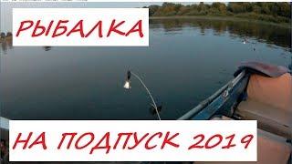 Рыбалка на подпуск в июне 2019г. Ловля леща на р.Волга.