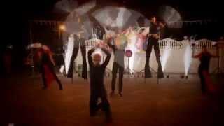 Fire show на свадьба в стиле винтажного цирка   Свадебный распорядитель Оксана Бедрикова