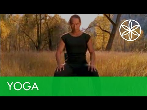 Chair Stretches to Get Your Body Ready for Meditation | Yoga | Gaiam