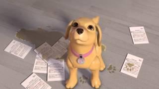 Барби: Жизнь в Доме мечты - Кто присмотрит за животными (3 эпизод 1 сезон)
