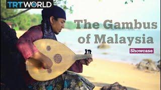 The sound of Malaysian gambus | Music | Showcase