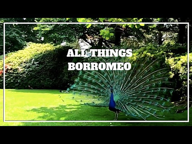 TOURING ALL THINGS BORROMEO - Lago Maggiore Italy