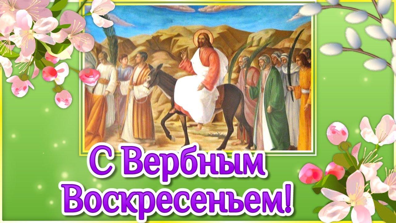 Вербное Воскресенье 2021🌸Красивые Поздравления с Вербным Воскресеньем🍀Вход Господень в Иерусалим