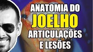 Dor no Joelho: Anatomia, Articulações e Lesões do LCA e Meniscos - Anatomia Humana - VíideoAula 101