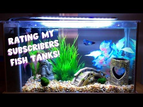 RATING MY SUBSCRIBERS FISH TANKS ?!