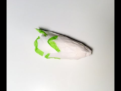 DIY endives en papier. Paper craft vegetables endive.