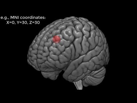 Introduction to Region of Interest (ROI) Analysis in fMRI