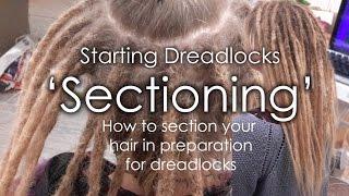 How to section dreadlocks - Starting Dreadlocks - 'Sectioning'