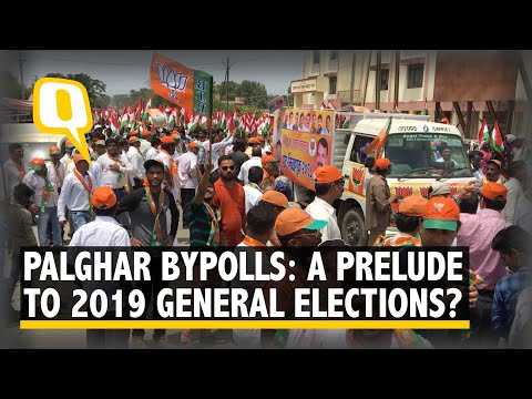 BJP vs Sena, Cong-NCP Alliance — Palghar Bypolls Prelude to 2019?