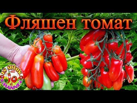 Фляшен томат (Flashe tomaten)