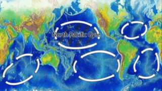 The Great Pacific Ocean Garbage Patch - Rey Ty