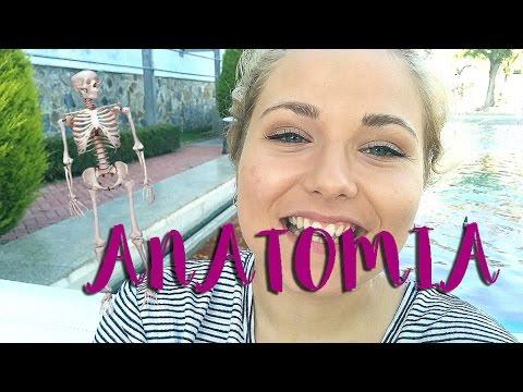 Estudiando MEDICINA | Examen FINAL ANATOMIA - YouTube
