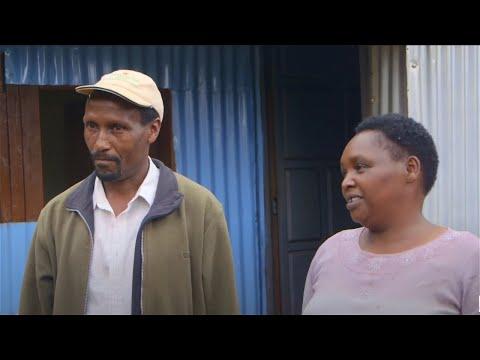 Shamba Shape Up Sn 06 - Ep 3 Seedlings, Fertilisers, Seed Selection (Swahili)