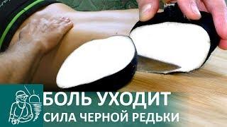 ☘ Что делать если болит спина | Компресс из черной редьки