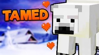 How To Tame Polar Bears In Minecraft Pocket Edition - Tame Polar Bears Addon (Windows 10 Edition)