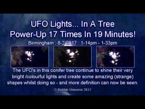Cosmic Conifer Displays 12 Consecutive Power-Ups (1) : 8-2-2017