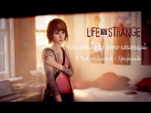 Life Is Strange - Как собрать все фото коллекций В Первом Эпизоде - Хризалида