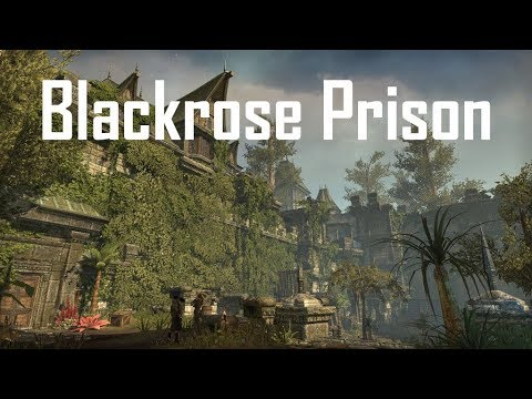 Blackrose Prison (vet) - all final rounds - Templar Healer