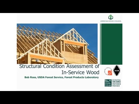 DES140 - Structural Condition Assessment of in-Service Wood