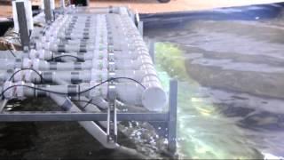 Bombora Wave Tank Testing