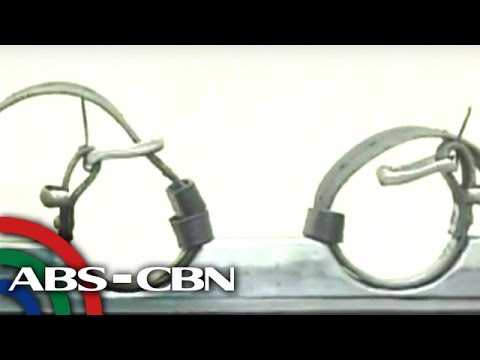 Headstart: Amnesty Int'l to solons on death penalty push: Use your conscience