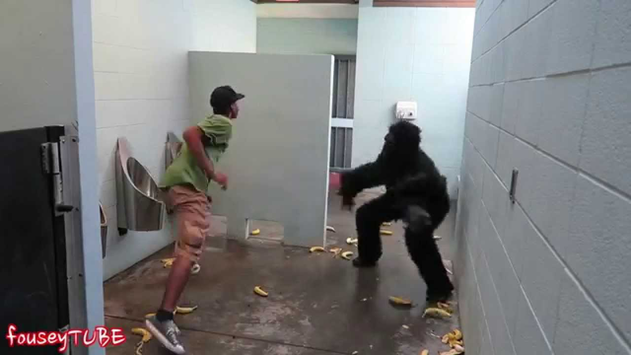 Escaped Gorilla Bathroom Prank escaped gorilla bathroom prank! - youtube