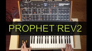 Prophet Rev2 Review/Demo (no talking) - playing through presets