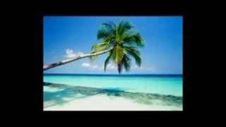Amateur Dj lugo- She loves (alive remix)