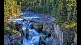 Relaxing Music with Singing Birds and Waterfall Sounds Spa, Yoga, Meditation, Study, Zen