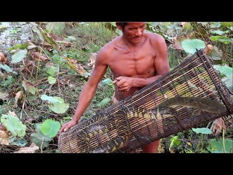 Thumbnail: Amazing Man Catch Water Snake And Fish Using Bamboo Net Trap