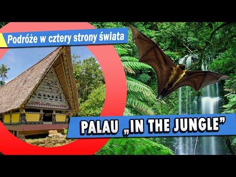 Palau Ngerulmud,