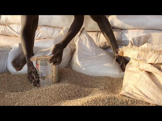Food Distributions Continue in South Sudan
