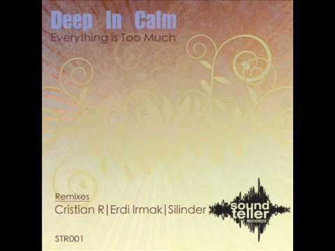 Deep In Calm - Everything Is Too Much (Original Mix)