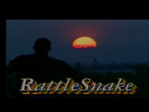 Download RATTLESNAKE 1 (AHANNA)BASED ON A TRUE LIFE STORY. NOLLYWOOD MOVIE 1995