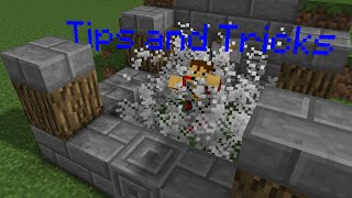 Minecraft Tips and Tricks - How to build a Chicken Fountain