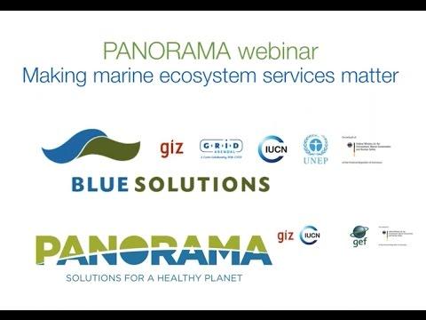 Making Marine Ecosystem Services Matter