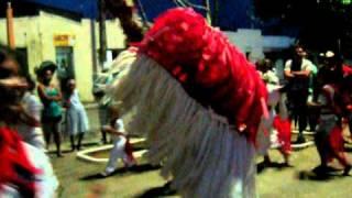 Boi Marinho Carnaval 2011 - Condado-PE