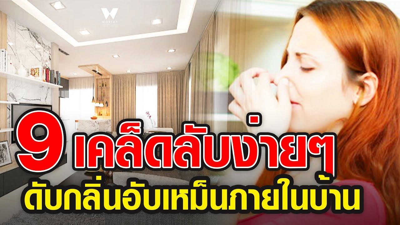 🔴บ้านเหม็นกลิ่นอับ ทำไงดี  9 เคล็ดลับ ดับกลิ่นอับกลิ่นเหม็นภายในบ้าน ด้วยวิธีธรรมชาติ