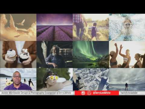How To Sell Images and Videos on Adobe Stock
