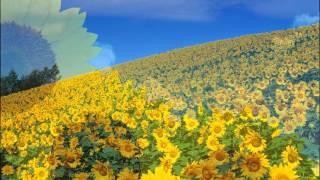 Nhạc không lời guitar hay nhất - Sunflower