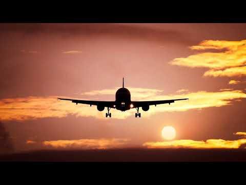Как отправить груз самолетом без пассажира?