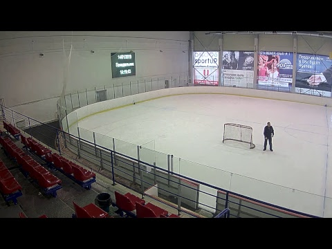 Шорт хоккей. Лига Про. Группа А. 14 января 2019 г.