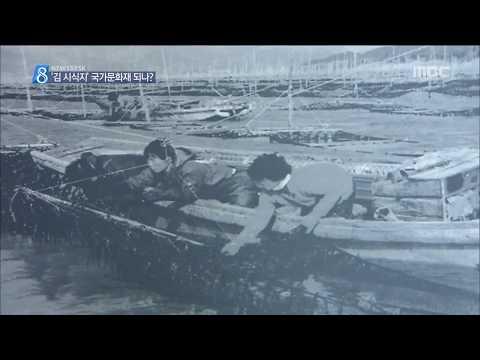 [뉴스데스크]김 시식지 국가문화재 되나?